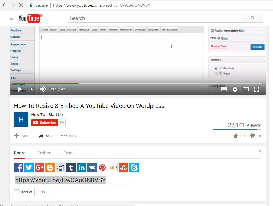 youtube video in wordpress pot,embed youtube video in a wordpress post